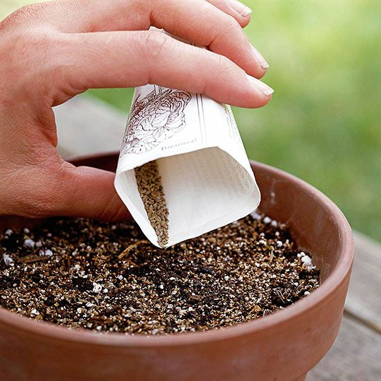 Gardening from seeds is an inexpensive and rewarding way to fill your garden. Check out Better Homes and Gardens' ten tips for picking the perfect crops.