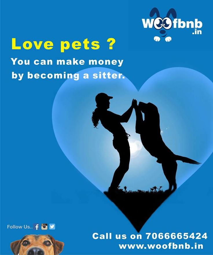 pet siiters in pune