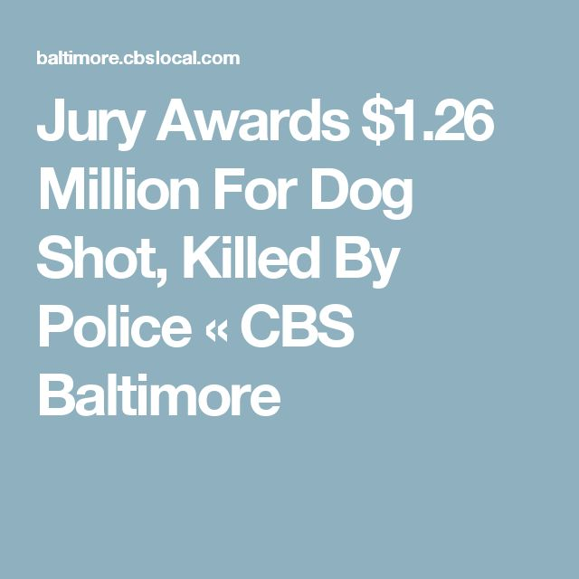 Jury Awards $1.26 Million For Dog Shot, Killed By Police « CBS Baltimore