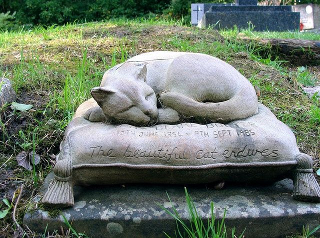"""Highgate Cemetery in London  This is the tombstone of Anna Clare Bootle  and engraved on it is, """"The beautiful cat endures."""""""
