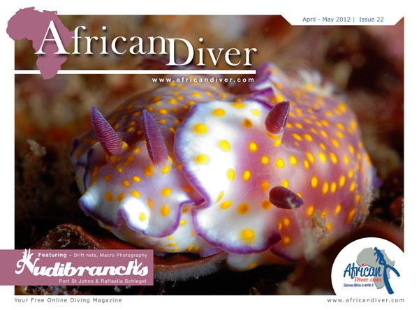 Issue 22: Download for free. http://africandiver.com/index.php/magazine/download-issues