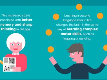 Infographic: How learning languages affects your brain