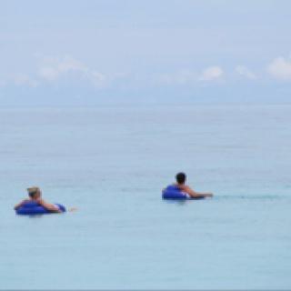 Floating in the open ocean...