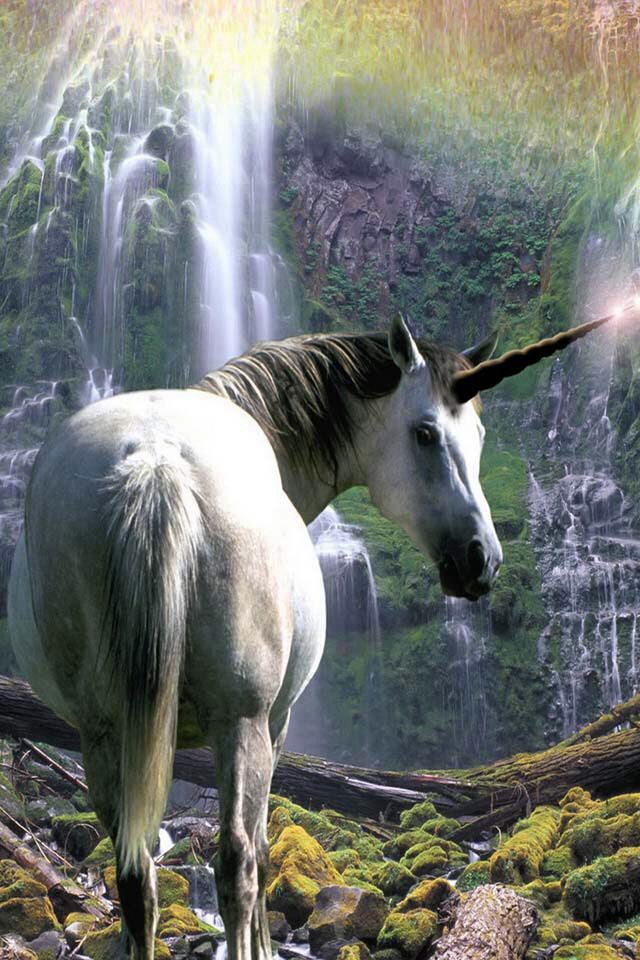 Real UNICORN!!!!!:)#unicorn | unicorns | Pinterest
