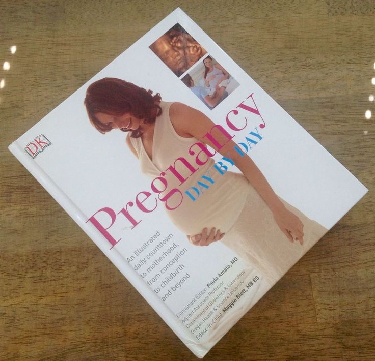 Pregnancy Day By Day by DK Publishing