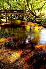 Lithia Park, Ashland, Oregon