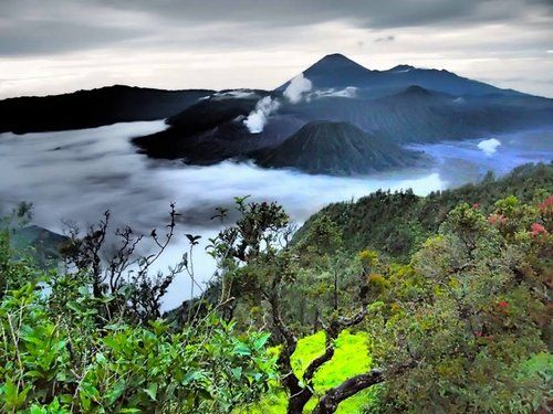 Mount Bromo - Malang, East Java