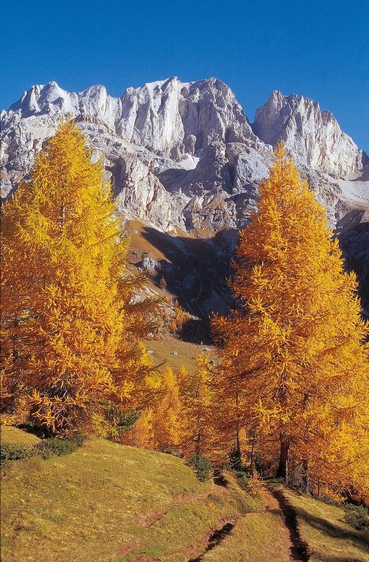Passo San Nicolò  - Trentino