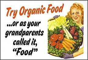 """Try organic food  ...or as your grandparents called it, """"Food""""Health Food, Healthy Snacks, Organic Foods, Organicfood, Food Posters, Eating Organic, Money Maker, True Stories, Real Food"""
