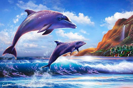17 best images about dolphins on pinterest dolphins for Dolphin mural wallpaper