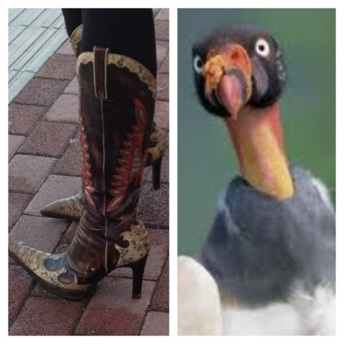 Turkey boots! lol