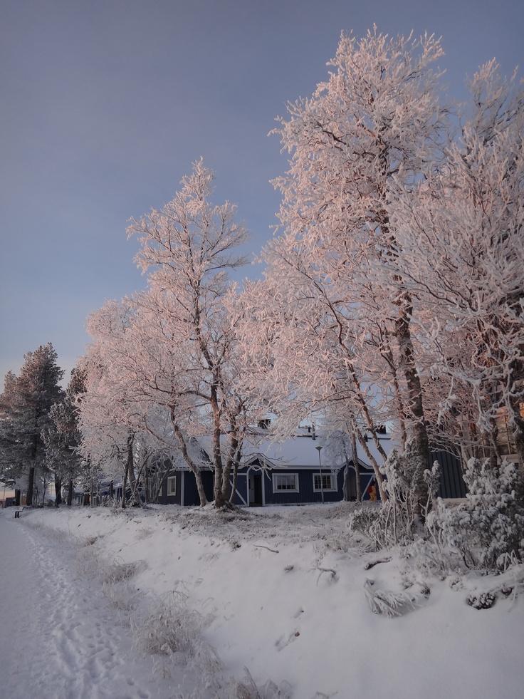 17 Best Images About Lapland Finland Saariselka On