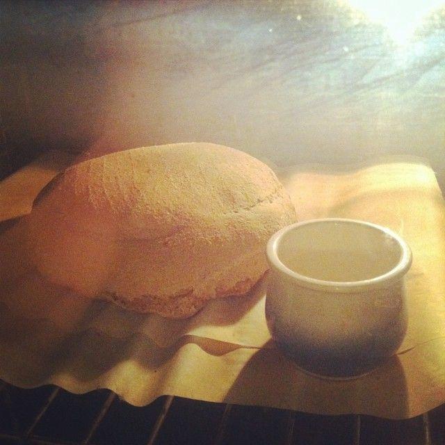 Facendo pan de cervexa con levedura nai - enfornado #vegan #veganfood #veganfoodporn #veganfoodshare #plantbased #plantstrong #instafood #instafoodie #pan #bread #beerbread #Padgram
