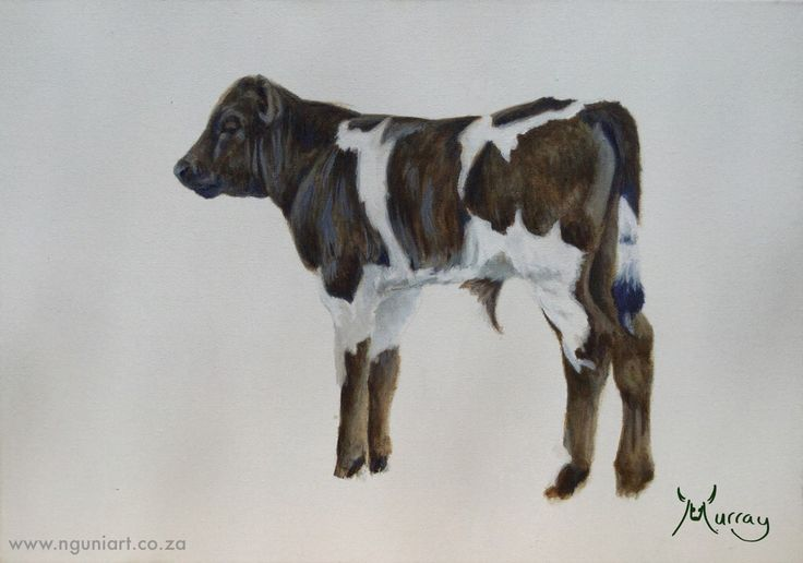 Nguni Calf Oil Painting  Size: A3 2015 www.nguniart.co.za