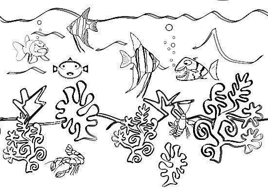 ocean animals plants coloring pages - photo#21