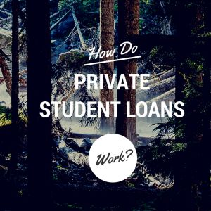 Private student loans act more like car loans that other types of student loans, and borrowers need to understand how private student loans work.