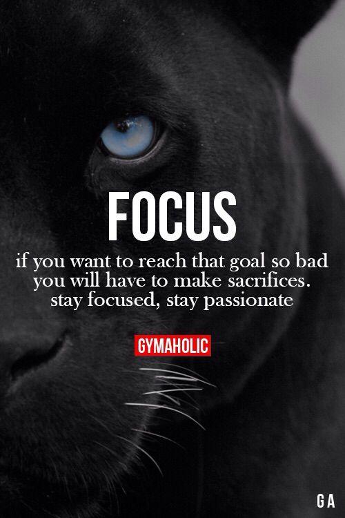 #focus#black#panter