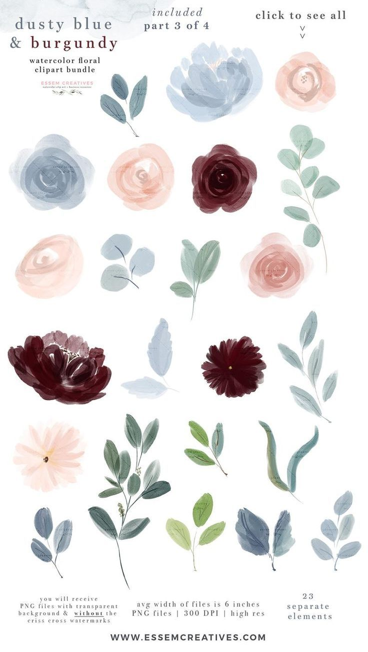 Dusty Blue Burgundy Watercolor Flowers Clipart Fall Floral Border Graphics Clipart Png Vintage Rustic Wedding Invitation Logo Scrapbooking Watercolor Flowers Floral Watercolor Wedding Invitations Logo