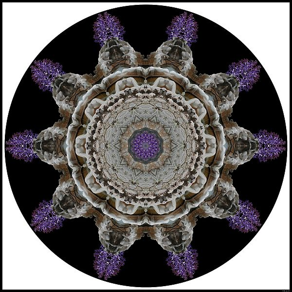 Gap Petrea by MSB Lane: The fantastic colors and forms of river-carved rock at the Gap in Swaziland are given color by a photo of the beautiful purple Petrea in this kaleidoscope mandala.