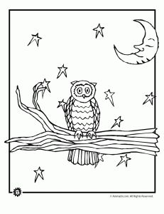 Night Owl Coloring Page 231x300 Pages