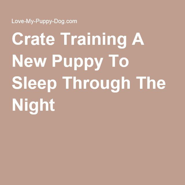 Crate Training A New Puppy To Sleep Through The Night