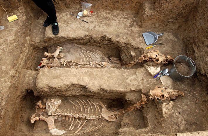 A 2500 ans char et deux chevaux qui semblent avoir été enterrés dans une position verticale ont été trouvés dans un tombeau thrace. La fosse a été creusée avec un côté incliné de telle sorte que les chevaux, portant des harnais complexes, auraient-ils tiré le char en place avant d'être tués. Aussi avait été un chien enchaîné au char. Ils peuvent avoir été possédé par l'occupant d'une tombe à proximité, qui contenait aussi des armures, des lances, des épées, des médicaments, et un encrier.