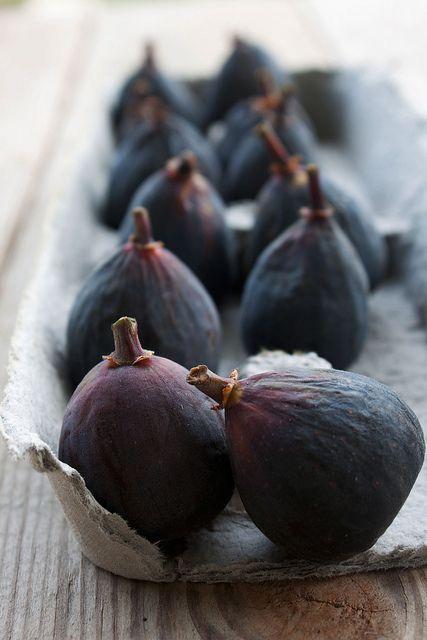 Fig Love