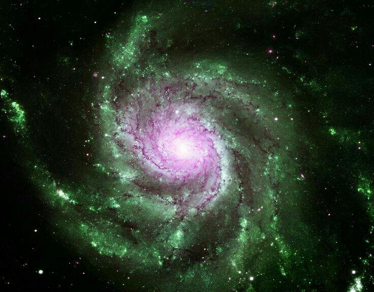 Pinwheel Galaxy. Pink Green.
