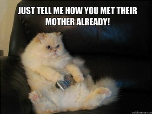 Kitty with his remote... Dump A Day Even More Funny Pictures! -
