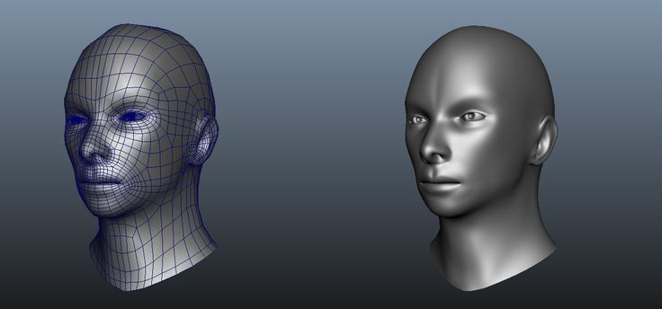 Head.JPG (1395×653)