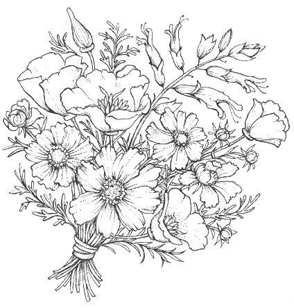 160 Best Flower Coloring 2 Images On Pinterest