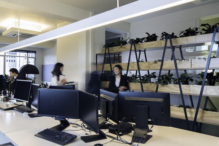 S&T Christchurch Studio #christchurch  #stephensonturner #interior #fitout #greenwall #officeplants #plants