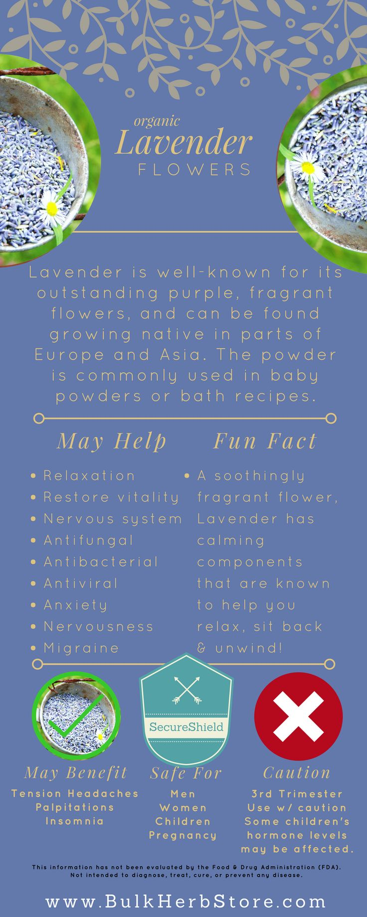 Lavender has a wonderfully relaxing effect on the mind and body and makes a good remedy for anxiety, nervousness, and physical symptoms caused by stress such as tension headaches, migraine, palpitations, and insomnia. It also has a stimulating edge to it, acting as a tonic to the nervous system and restoring vitality to people suffering from nervous exhaustion! (purchase at bulkherbstore.com )