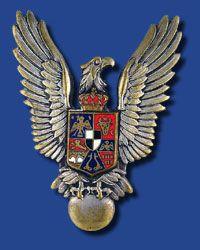 Romanian Air Force Insignia