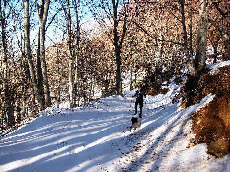 Trekking to Chania - Pelion - Greece