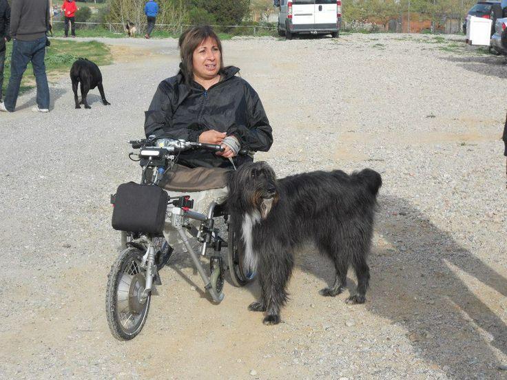 Curso de Adiestramiento Canino Profesional con Muxu