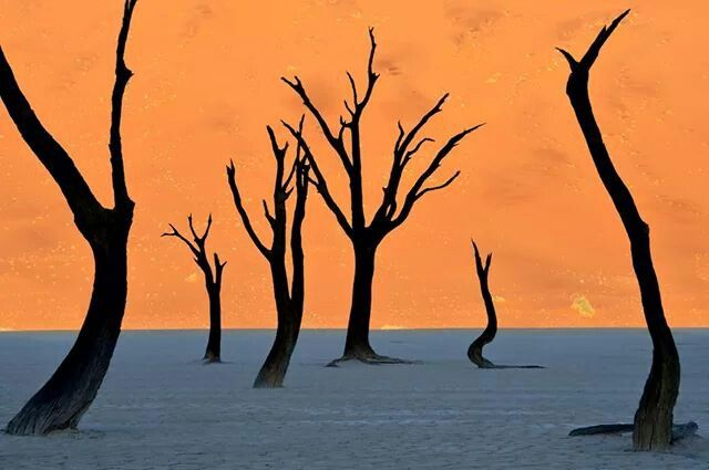 This is NOT a painting, this is the Namib desert