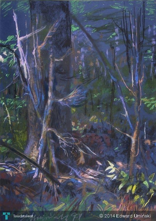Kryjówka 1999 | 69 x 48 cm | sucha pastela