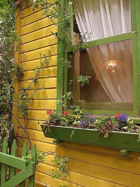 A summer cottage window...