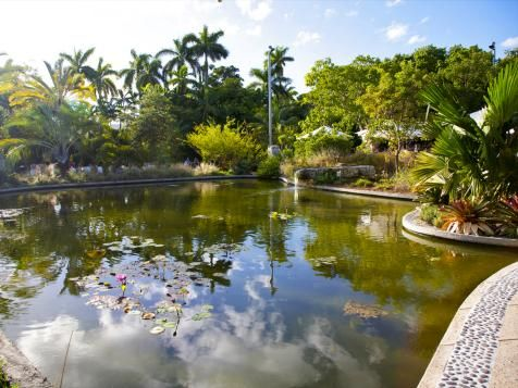 Floridau0027s Best Botanical Gardens