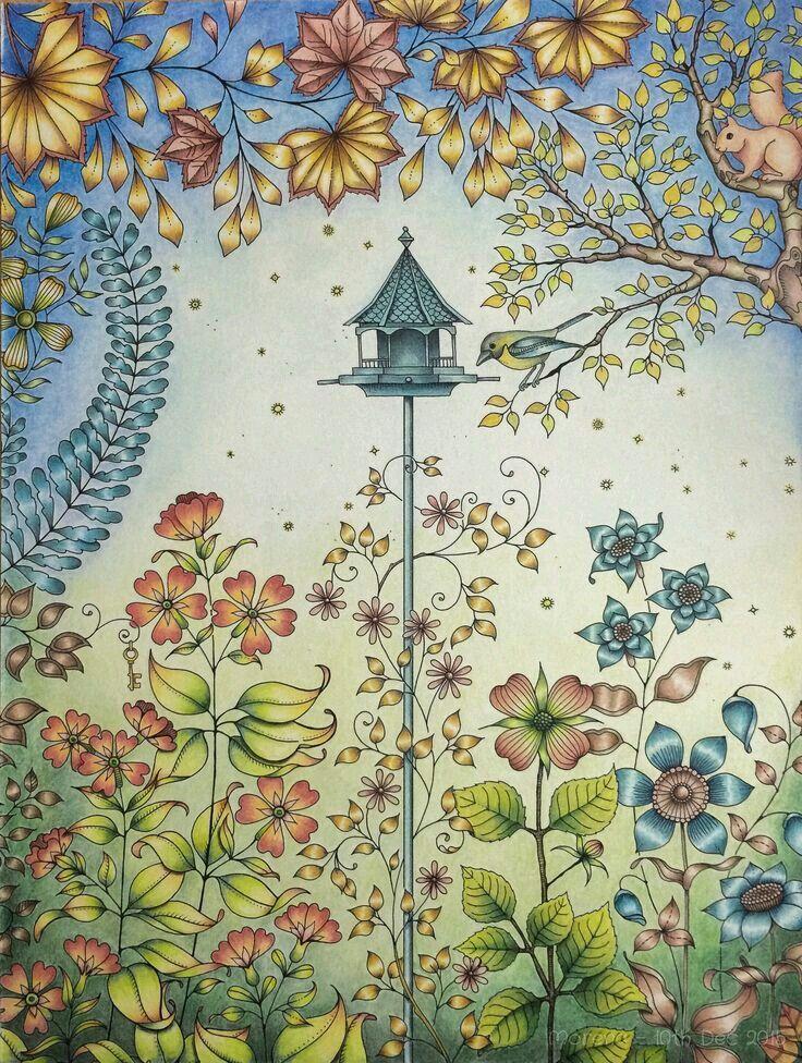 Таинственный сад примеры раскраски, занятие спортом