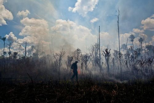 Three-way collaboration key to fire control in the Amazon — study | CIFOR Forests News Blog