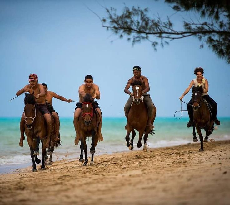 In French Polynesia, in Tubuaï, young people gather every Sunday for unrestrained horse races along the ocean. Just for the glory of a day, they sometimes travel tens of kilometers to get off the mountain and participate in these competitions. The Explorers: know better to protect better © Ben Thouard / The Explorers