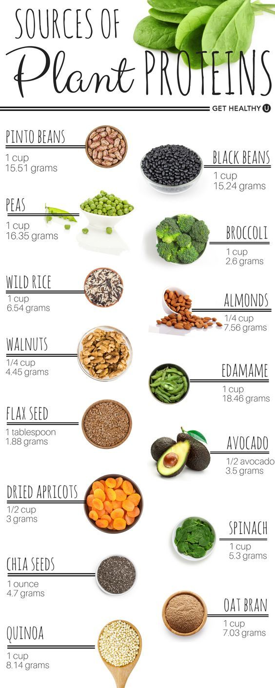 myhealthandfitnessmotivation:  Sources of plant proteins: - Pinto beans - Black beans - Peas - Broccoli - Wild rice - Almonds - Wallnuts - Edamame - Flax seed - Avocado - Dried apricots - Spinach - Chia seeds - Oat bran - Quinoa