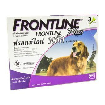 สินค้าคุณภาพดี Frontline Plus for Dogs 20-40 kg ฟร้อนท์ไลน์ พลัส สำหรับสุนัข 20-40 กิโลกรัม 2.68 มล./หลอด บรรจุ 3หลอด คุ้มค่าเมื่อซื้อ Frontline Plus for Dogs 20-40 kg ฟร้อนท์ไลน์ พลัส  ลดเพิ่ม  ----------------------------------------------------------------------------------  คำค้นหา : Frontline, Plus, for, Dogs, 2040, kg, ฟร้อนท์, ไลน์, พลัส, สำหรับ, สุนัข, 2040, กิโลกรัม, 2.68, มล., หลอด, บร, จุ, 3, หลอด, Frontline Plus for Dogs 20-40 kg ฟร้อนท์ไลน์ พลัส สำหรับสุนัข 20-40 กิโลกรัม 2.68…