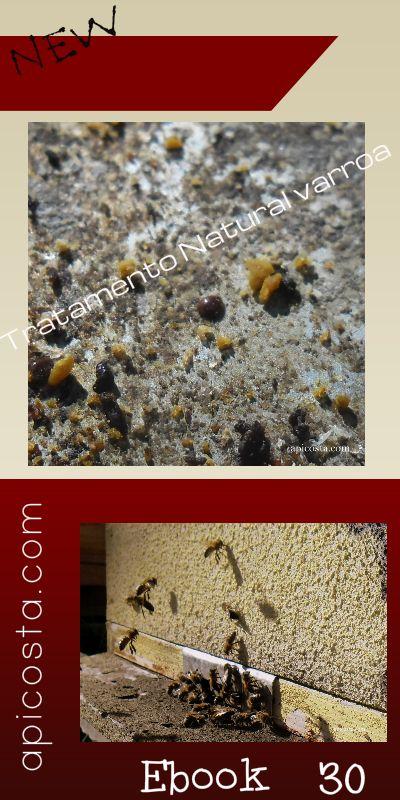 Novo e-book com todos os tratamentos Naturais para as Abelhas. Como tratar da Varroa , da Nosema, como proteger da Vespa. São todos tratamentos naturais e simples