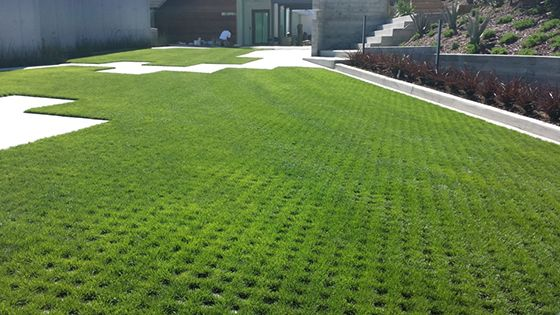 A new design idea for drivable grass permeable pavers a for Green pavers