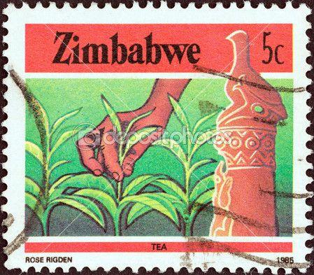 Zimbabwe - intorno al 1985: un timbro stampato in zimbabwe la rivista national infrastructure illustrato tè, intorno al 1985 — Foto Editoriale Stock © lefpap #31273385