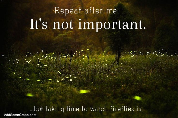 Repeat after me its not important but taking time to watch fireflies is.