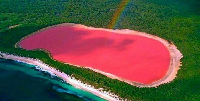 Розовое озеро в Австралии.